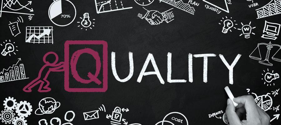 Lavorare in qualità: audit 2020